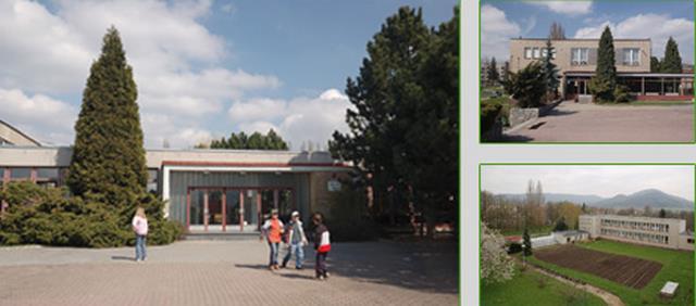 Skola petlerska
