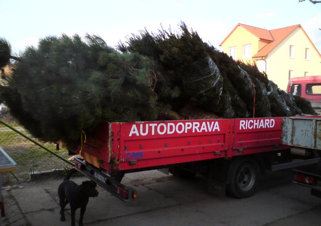 Richard Kubica, s.r.o. - autodoprava a přeprava - fotografie 64/64
