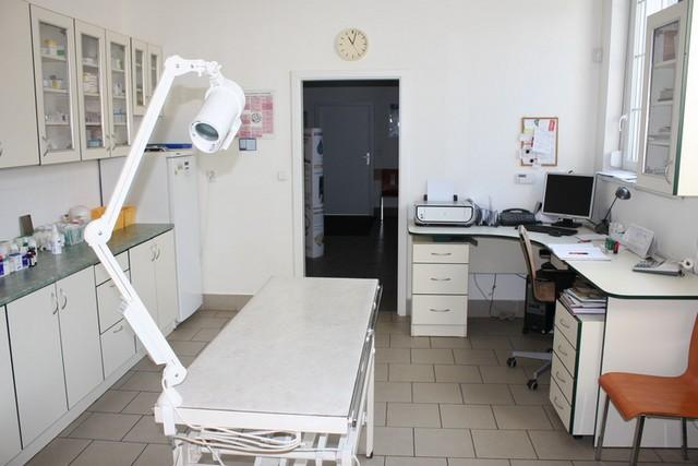 Veterinární ordinace Tuma MVDr. & Král MVDr. - fotografie 10/10