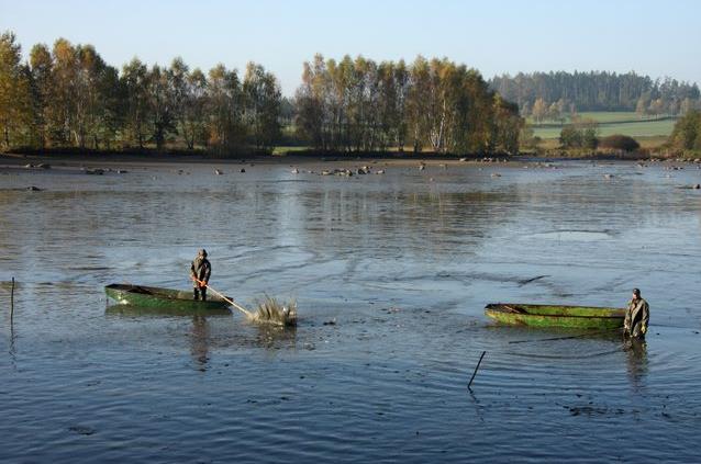 Rybářství Lnáře, s.r.o. - fotografie 16/17