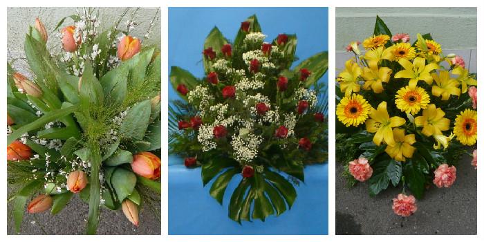 Květiny Oxalis - fotografie 2/8