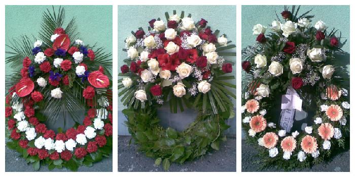 Květiny Oxalis - fotografie 3/8
