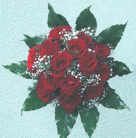 Květiny Oxalis - fotografie 7/8