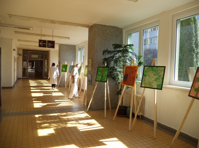 Nemocnice Prachatice - fotografie 16/20