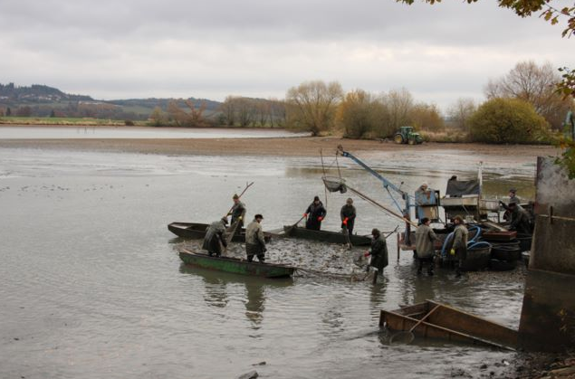 Rybářství Lnáře, s.r.o. - fotografie 14/17