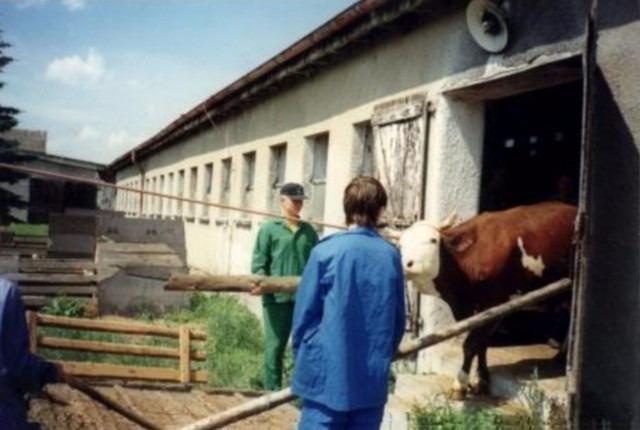 Střední zemědělská škola Rakovník, Pražská 1222 - fotografie 6/20