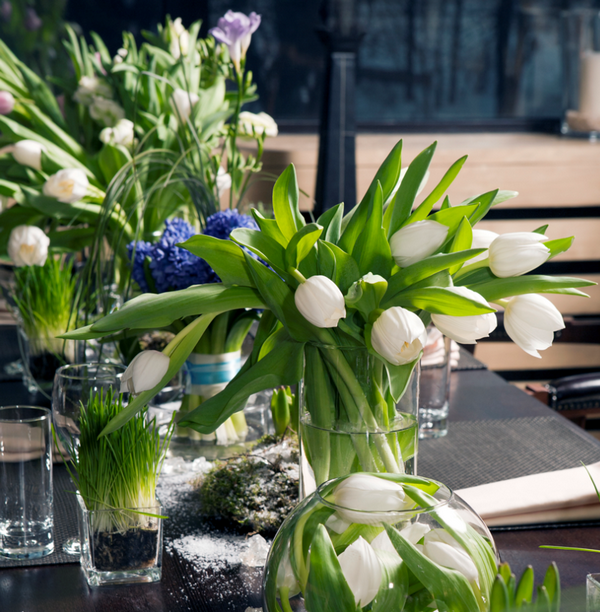 Květiny Studio Detail - fotografie 5/16
