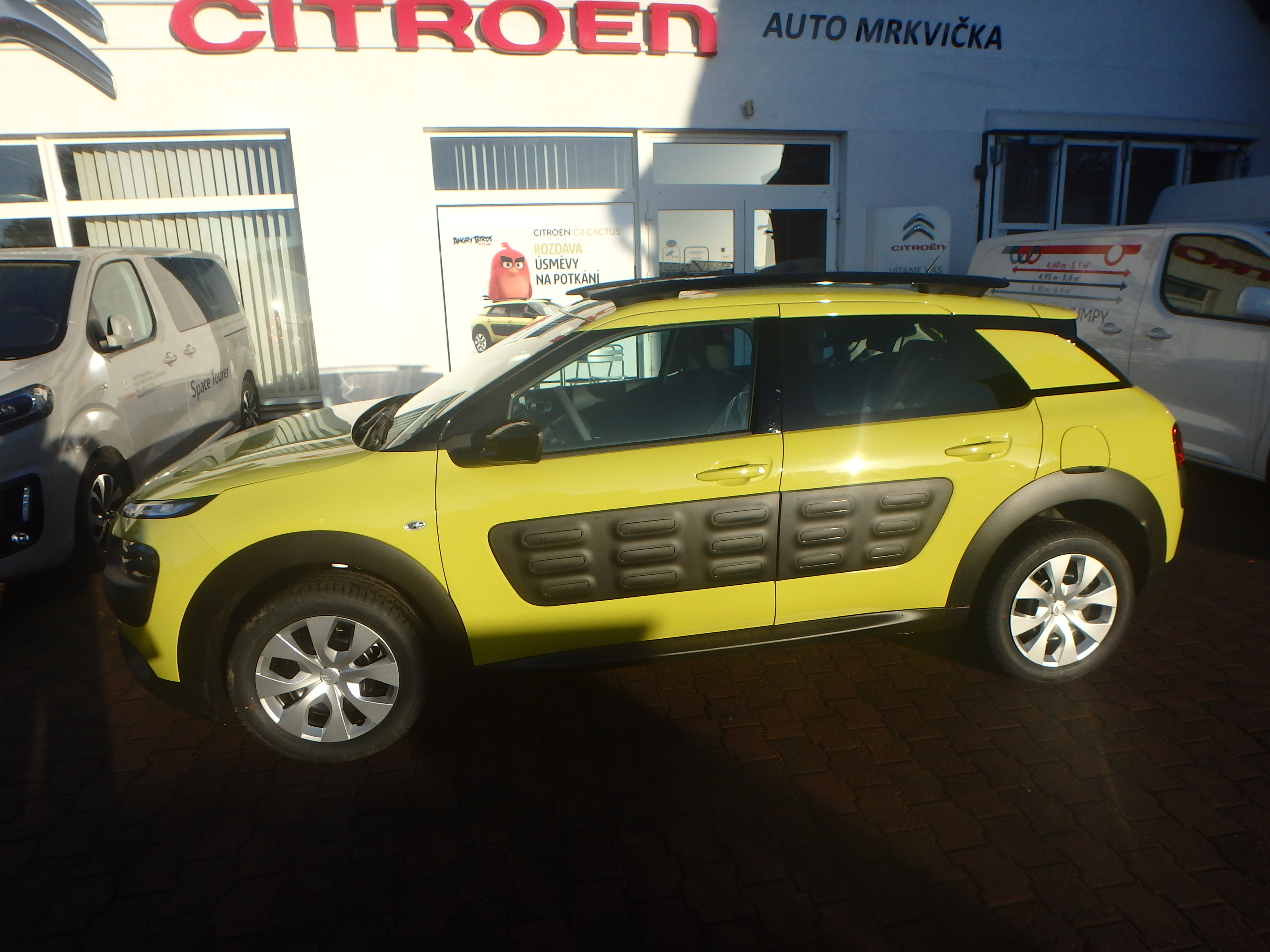 C4 Cactus žlutý
