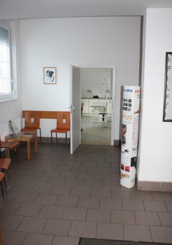 Veterinární ordinace Tuma MVDr. & Král MVDr. - fotografie 2/10