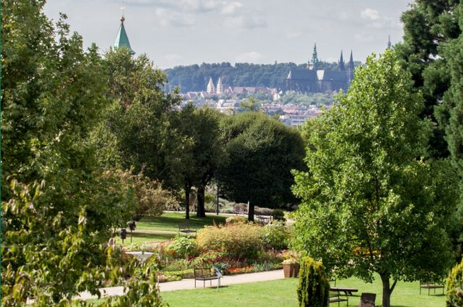Botanická zahrada Praha - fotografie 4/25