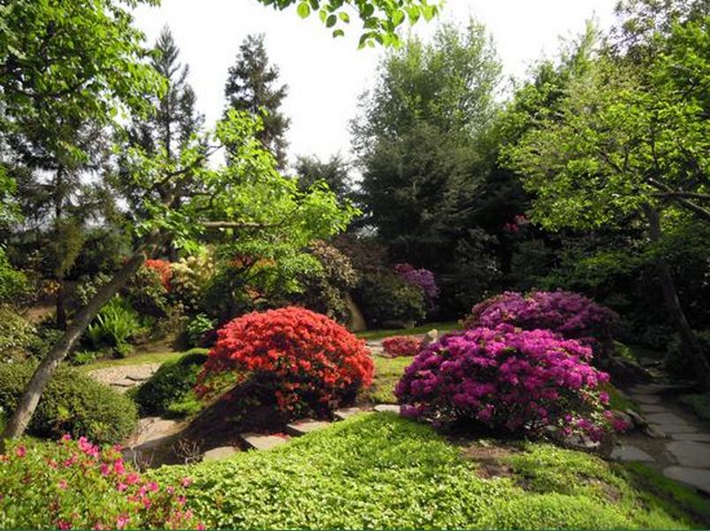Botanická zahrada Praha - fotografie 6/25