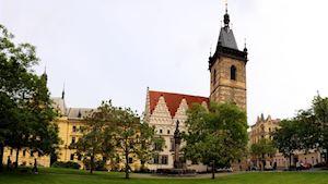 Novoměstská radnice, příspěvková organizace