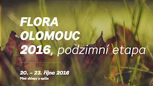 Flora Olomouc 2016 - podzimní etapa