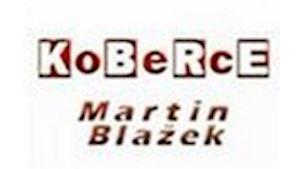 Koberce, tapety, podlahy, dveře - Most Teplice Litvínov - Martin Blažek