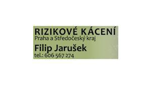 Filip Jarušek - rizikové kácení stromů Praha a okolí