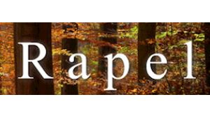 RAPEL, spol. s r.o. - výroba a prodej palivového dřeva a řeziva