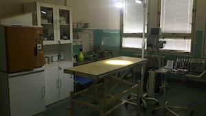 Veterinární klinika Semily - profilová fotografie