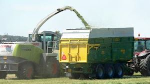 AGRO BYSTŘICE a.s. - Zemědělské družstvo