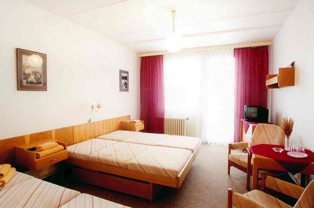 Trutnov Upa Valley hotel s.r.o. - fotografie 4/6