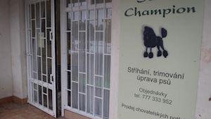 Psí salon Champion