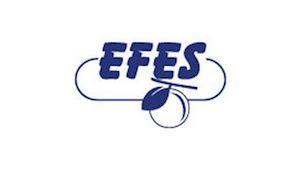 EFES, spol. s r.o. -  centrální sklad