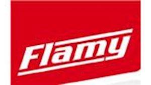 FLAMY PARDUBICE a.s.