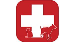 Všeobecná veterinární činnost - MVDr. Jan Vojta