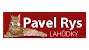 Pavel Rys