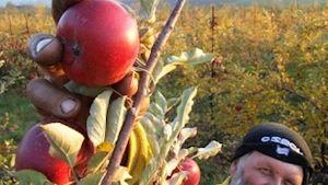 Pavel Ivánek - Prodej ovoce