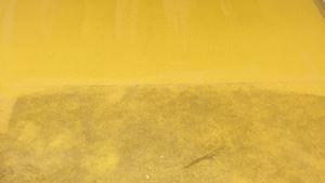FORTEL CB s.r.o. - úklidová firma, úklidové služby - profilová fotografie