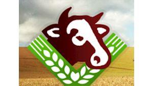 Zemědělské družstvo Bernartice