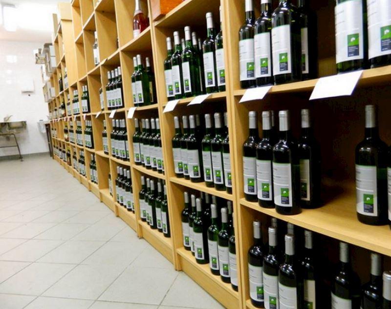 Šlechtitelská stanice vinařská, s.r.o. - fotografie 9/15