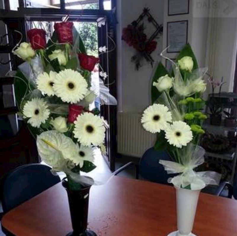 Pohřební služby OMEGA, s.r.o. - Němcová - fotografie 9/16