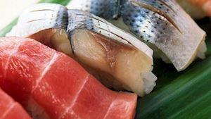 FINE FISH CZ s.r.o.