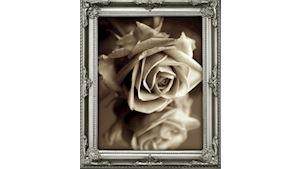 Pavel Zajíček - smuteční květiny