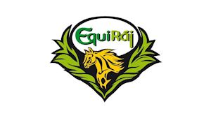 EquiRáj - přeprava koní
