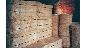 Extra jemný řez - balík 35 kg - EKOWOOD