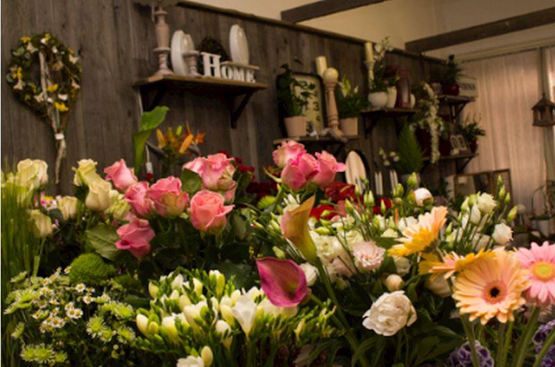 Květinové studio Petronila - fotografie 1/20