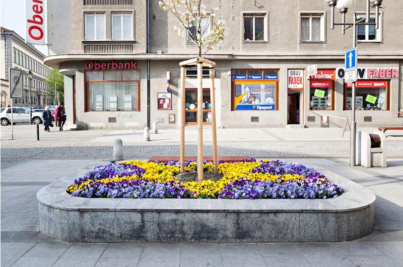 Zahradní centrum Opava - fotografie 14/15