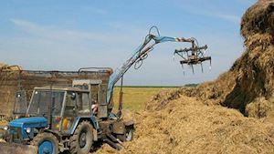Zemědělské družstvo Kokory - profilová fotografie