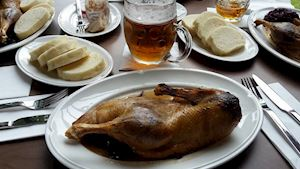 Art Restaurant Mánes - profilová fotografie