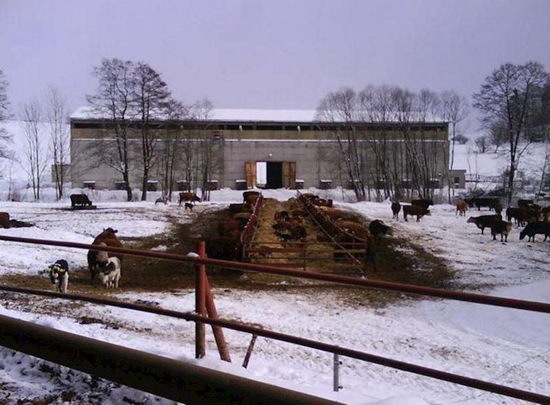 Zemědělská farma Jan Hořák - fotografie 10/14