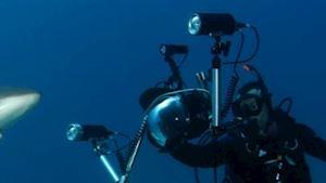 Dive Crew Czech spol. s r.o.