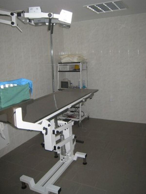 Veterinární lékař - Novotný Luděk MVDr. - fotografie 2/10