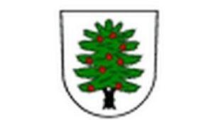 Obec Tis