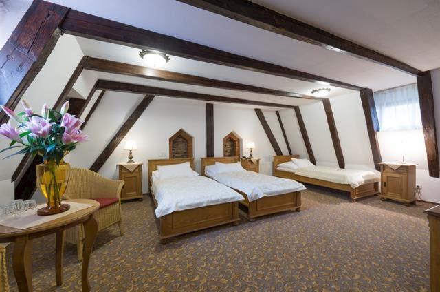 Hotel Černý slon **** - fotografie 11/20
