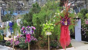 Jarní Flora s thajskou účastí přivábila i přes zmrzlý čtvrtek na 60 tisíc návštěvníků