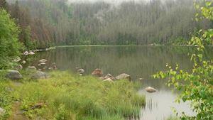 Správa Národního parku a chráněné krajinné oblasti Šumava
