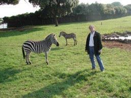 Animal - veterinární klinika - MVDr. Jiří Pikula, Ph.D. - fotografie 7/17