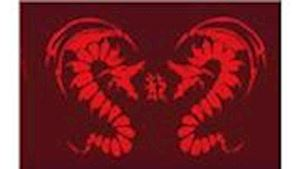 Karate Club Dragons Rosice o.s.